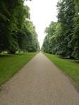Hyde Park 2014-06-20 20.36.21
